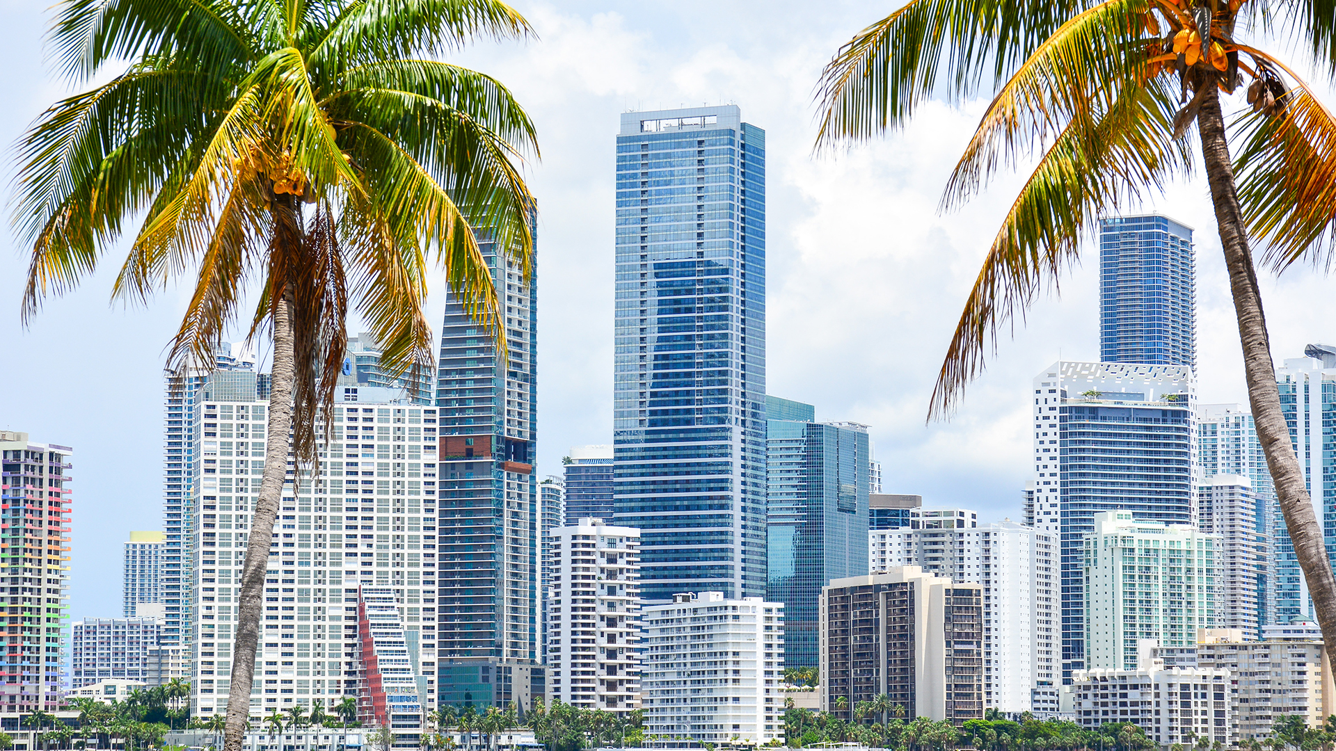Downtown Miami skyline along waterfront seen through palm tress in South Florida